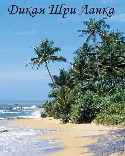 Дикая Шри-Ланка