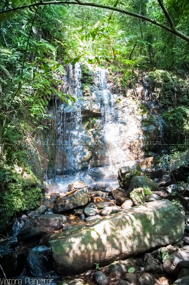 Водопад в лесу Синхараджа
