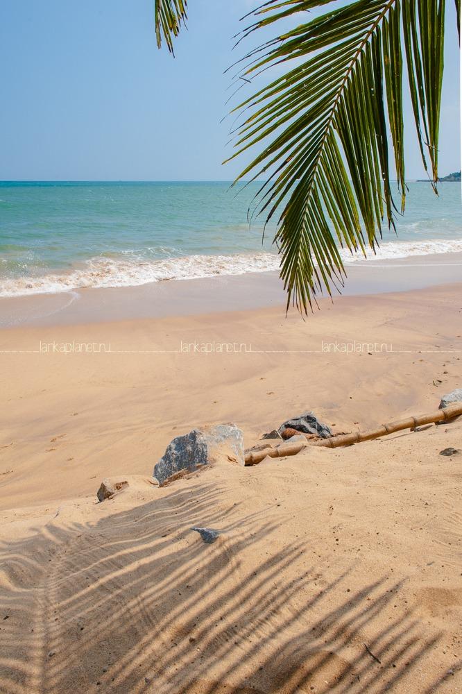 Пляж Тангалле